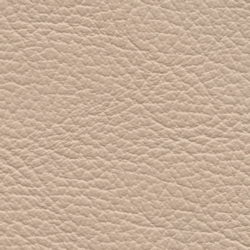 birch blush beige